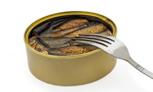 Can Cats Eat Canned Salmon?