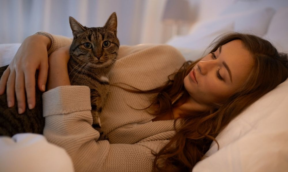 How Do Cats Improve Your Health?